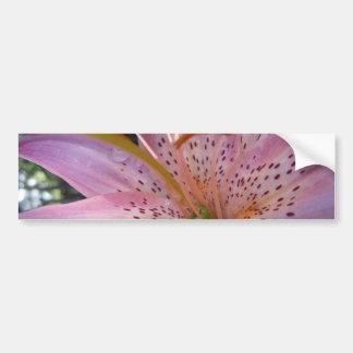 Mjuk rosa lilja II Bildekal