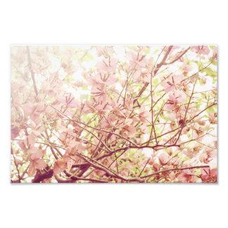 Mjuka pastellfärgade blommigtgrenar fototryck