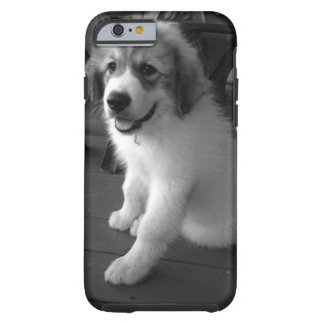 Mobilt fodral för hund tough iPhone 6 skal