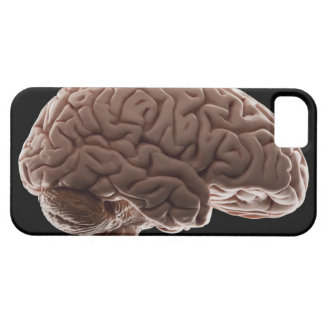 Modellera av människahjärnan, den sköt studion barely there iPhone 5 fodral