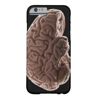 Modellera av människahjärnan, den sköt studion barely there iPhone 6 fodral
