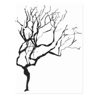 Moderiktigt wintry naturträd vykort