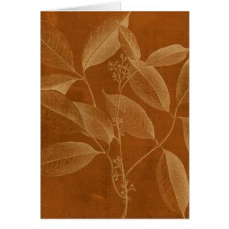 Modern botanik VI Hälsningskort