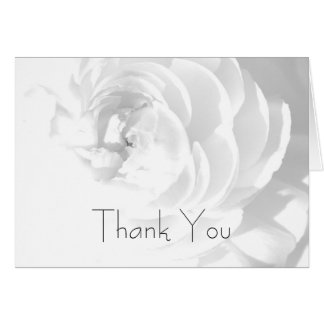 Modern Chrysanthemum/pion - tackkort OBS Kort