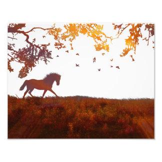 Modern Minimalist affisch för Fototryck