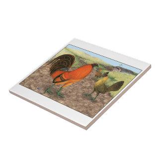 Modig fågel på lantgården kakelplatta