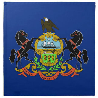 MoJo för Pennsylvania statlig flaggaamerikan Näsdukar