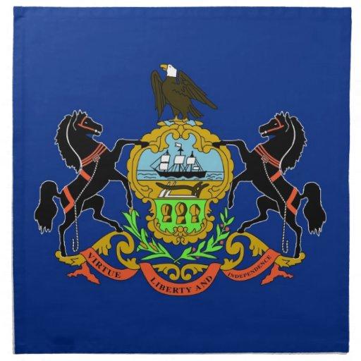 MoJo för Pennsylvania statlig flaggaamerikan serve Servetter