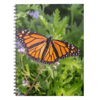 Monarkfjäril Anteckningsbok Med Spiral