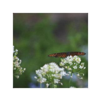 Monarkfjäril Canvastryck
