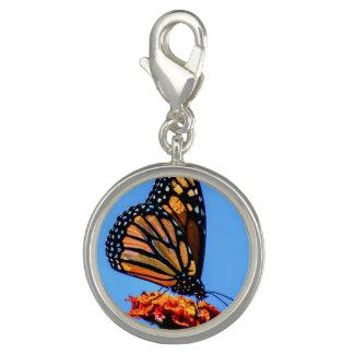 Monarkfjäril - charms