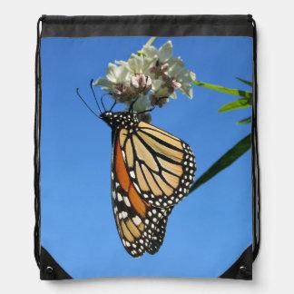 Monarkfjäril Gympapåse