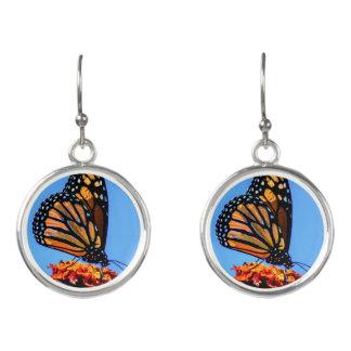 Monarkfjäril - örhängen