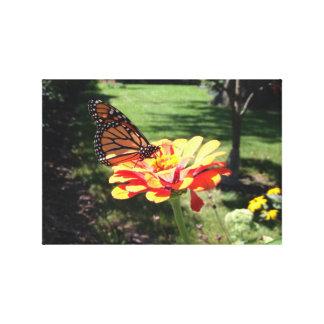 Monarkfjäril på kanfas canvastryck