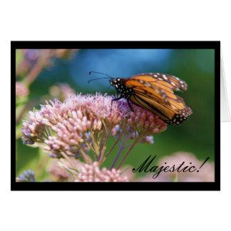 Monarkfjäril som är majestätisk! hälsningskort