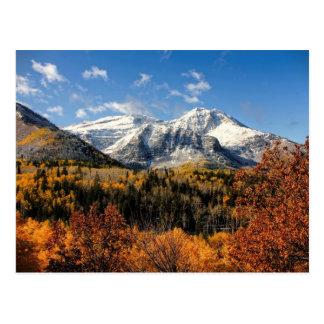 Montering Timpanogos i höstUtah berg Vykort