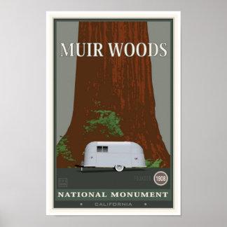 Monument 1 för Muir skogenmedborgare Poster