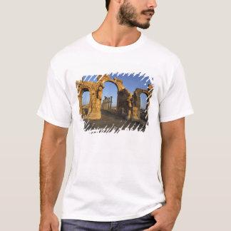 Monumental båge, Palmyra, Homs, Syrien T Shirts