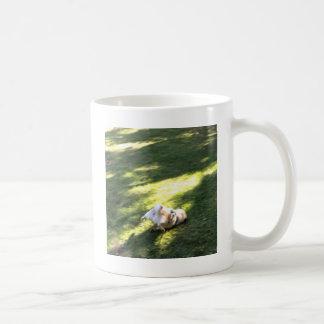 Mops Faceplant Kaffemugg