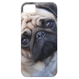 MOPS iPhone 5 FODRALER