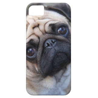 MOPS iPhone 5 CASES