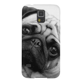 Mopshund Galaxy S5 Fodral