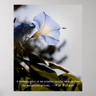 morgonhärlighet med Walt Whitman Qoute Poster