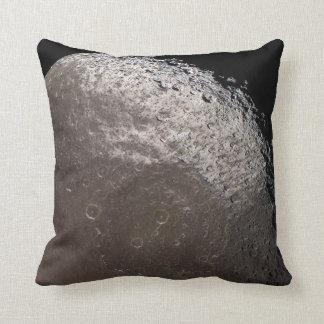 Mörk-befläckte Iapetus kudder Kudde