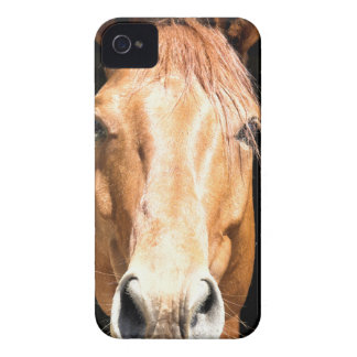 Mörk häst iPhone 4 fodral