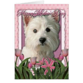 Mors dag - rosa tulpan - västra höglands- Terrier Hälsningskort
