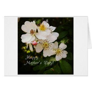 Mors dagkort med det blom- fotoet hälsningskort
