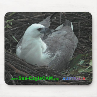 Morsasitta på den Mousepad för 2 ägg vågrät 2013 Musmatta