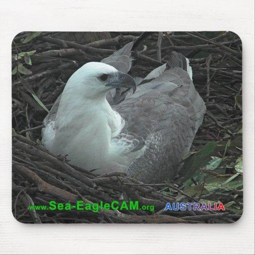 Morsasitta på den Mousepad för 2 ägg vågrät 2013 Musmattor