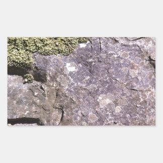 Moss som växer på australiensisk granit i rektangulärt klistermärke