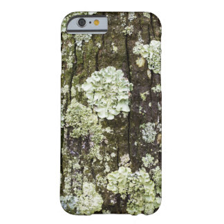 Mossy Oakstamiphone case Barely There iPhone 6 Skal