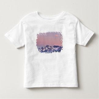 Mount Rainier nationalpark, Sarvent glaciärer T-shirt