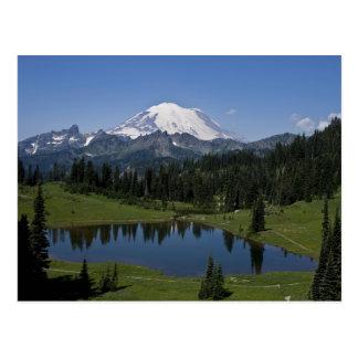 Mount Rainier och Tipsoo sjövykort Vykort
