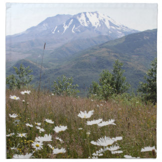 Mount Saint Helens Tygservett