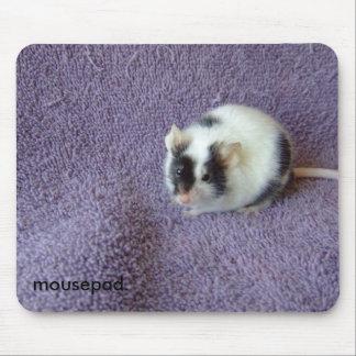mousepad. musmatta