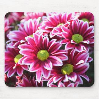 Mousepad - rosablommor musmattor