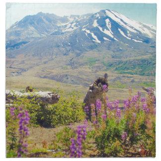 Mt. St Helens Tygservett