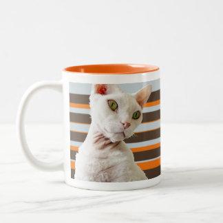 Mugg för Casper Retro randRex katt