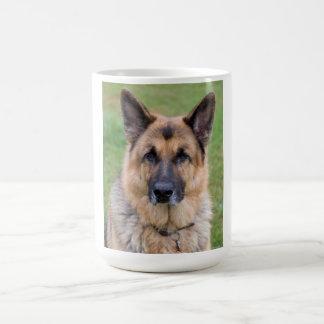 Mugg för foto för tysk herdehund härlig