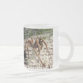 Mugg för kaffe för ökendjurlivtarantel
