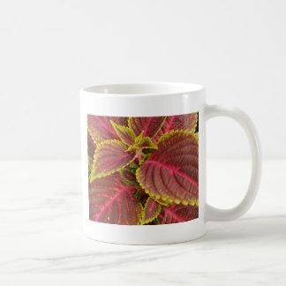 muggar vit, format, blommor, landskap, tecken