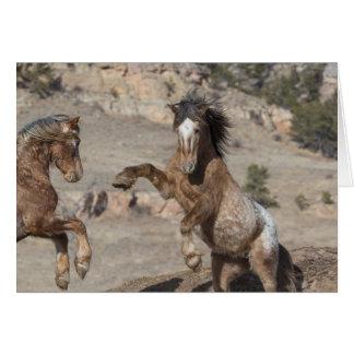 Munhuggas för Mustangs: Snabbt växande till Hälsningskort