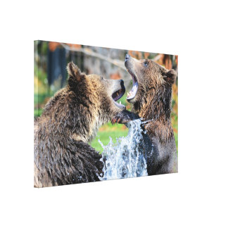 Munhuggas Grizzlybjörnar Canvastryck