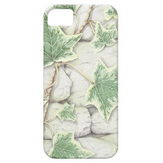 Murgröna på en torr iphone case för stenvägg med iPhone 5 skal