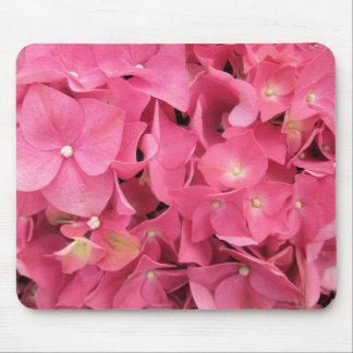 Musen vadderar - mörka rosa vanlig hortensia musmatta