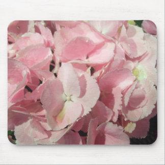Musen vadderar - rosa vanlig hortensia musmatta